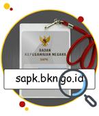 Sistem Aplikasi Pelayanan Kepegawaian BKN